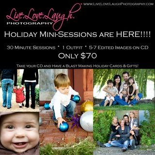 Holiday Mini Session 2011 Flyer copy